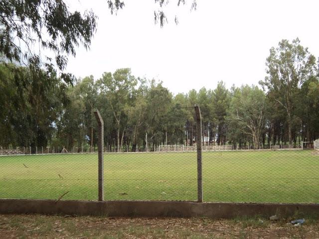 cancha de Facundo de Villa Unión5