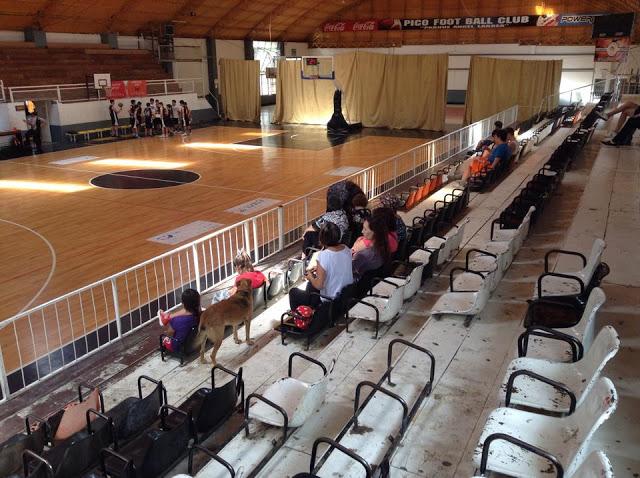 Estadio cubierto de Pico FC5